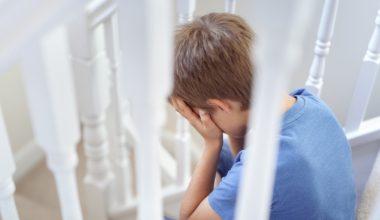 Salud mental infantil: Investigadores y profesionales compartieron sus experiencias