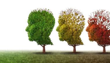 Intervención y prevención en torno a la demencia